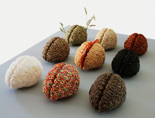 Brain sculptures by Sara Asnaghi