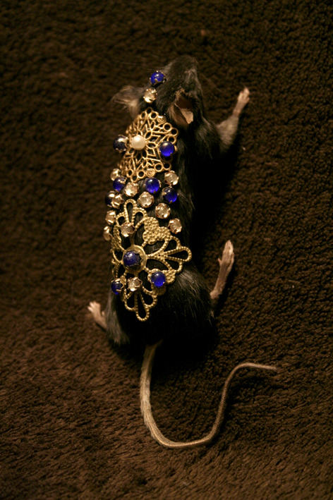 Taxidermy Jewelled Mouse Brooch/Pin