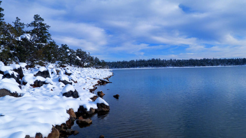 Show_Low_Lake_Snow on Flickr. Cold Day