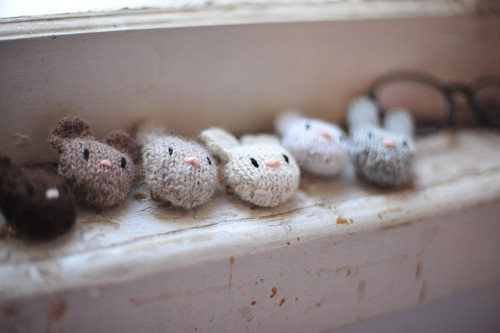 coello:  All of them by Sarah McNeil on Flickr.