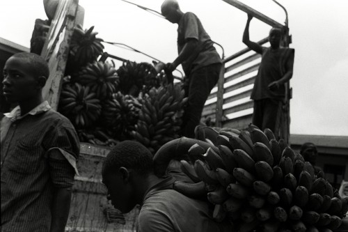 Boys load a truck with matooke. Matooke is a Ugandan staple dish.  Photography by  Bryan Anselm