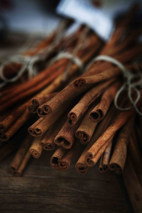 inspirationlane-com:  (via Christmas / bundles of fragrant cinnamon….)