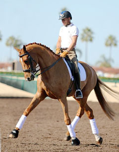 One of Steffen Peters' new Grand Prix sport horses - Sundance.