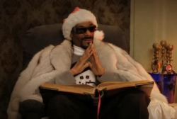 Snoop Dogg is going to tell us the meaning of Christmas.  Twas the nizzle before Christmizzle, and all through the hizzle…  Not a creature was stirring, not even a mizzle.  fo shizzle.  All were awaiting Sizzle Clause and his bag To bring the good homies and bitches their swag