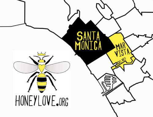 "LEGALIZATION UPDATE:   DEL REY = ANOTHER VICTORY FOR THE BEES!! Del Rey: Approved motion to support pilot program (December 2011) Mar Vista: Approved motion to support pilot program (November 2011) Santa Monica: LEGALIZED!!! (December 2010)  UP NEXT:South Robertson Neighborhoods CouncilGreater Griffith Park Neighborhood Council (Venice & Culver City coming soon…) MOTION: ""The board therefore recommends the  implementation of a Beekeeping Pilot Program in to test safety and  develop best practices for future expansion. We urge the City of LA to  adopt a policy that includes conditions relating to maintenance,  location, registration and notification to assure for the safety of all  residents which may result in the continued preservation of quality of  life and preservation of single-family residential districts."" Click here to view resources to help legalize urban beekeeping in YOUR community!"