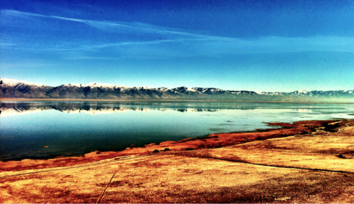 "Utah Landscapes 2 ""Lake"" - Antelope Island, UT iPhone 4, Camera+ The Great Salt Lake is a bizarre ecosystem. One so different from the oceans, rivers and lakes of my youth. Over Thanksgiving we went to explore Antelope Island, a park set aside for wildlife and populated with Bison, Antelope and other wild creatures. We saw a lone Bison on the road, it seemed unperturbed by our presence and allowed us to drive slowly by and take photos. This shot is taken from a high point on the island looking West. The Wasatch Mountains can be seen in the distance across the marsh of the island and the lake. On the right side of the image you can see the beginnings of the smog/inversion layer that often collects around Salt Lake City on high pressure days. We need better air quality laws here but the state and local government seem to think otherwise. I offer this image as a print as well. My younger brother and his wife will have one hanging on their wall shortly."