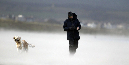 Strong winds batter UK - see more images here. A man walks his dog on the Portstewart Strand coast in Northern Ireland Photograph: Cathal Mcnaughton/Reuters