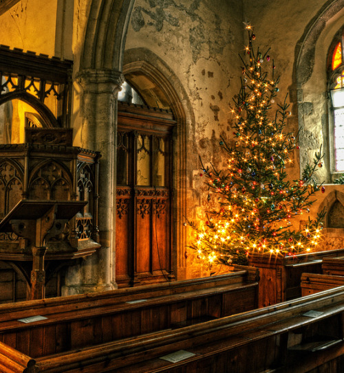 The festive, cosy Christmas interior of St. Michael's, Hernhill, in the English southern county of Kent. Isn't this a grand old church? I would like to see a Christmas programme here- you know, the ones where little children come out robed in white looking beatific and sing carols in terrified whispery voices. Except for that big-mouthed one belting it out from the back, there's ALWAYS one of those. I *may* {averts eyes innocently} know this from personal experience but you don't want me to go on about THAT via Neil G on 500px.com
