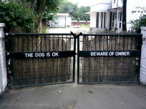 Beware Of Owner Sign  The owner immediately ran out and started barking at the photographer.