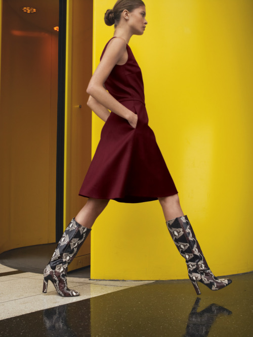 These boots are made for walking! Valentino python.