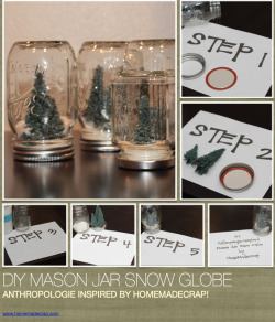 Anthro-Inspired Snow Globe (waterless)