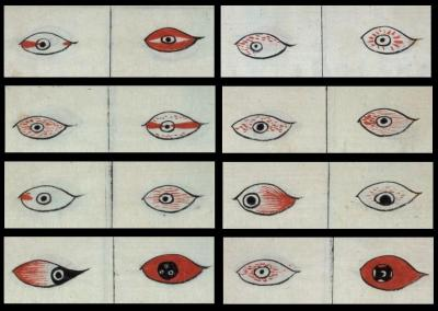 lunar-danse:  Majimaganryonozu (undated)All the different flavours of pinkeye.