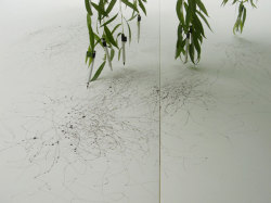 "i-eviscerate:  Tree Drawings, Tim Knowles ""A series of drawings produced using drawing implements attached to the tips of tree branches, the wind's effects on the tree recorded on paper. Like signatures each drawing reveals the different qualities and characteristics of each tree."""