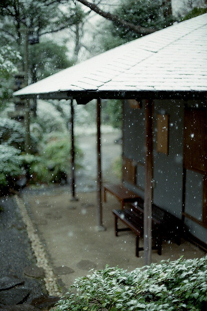 It's snowing ^ ^ on Flickr. From the Japan archives 2010 DNP Centuria200, Canon AE1