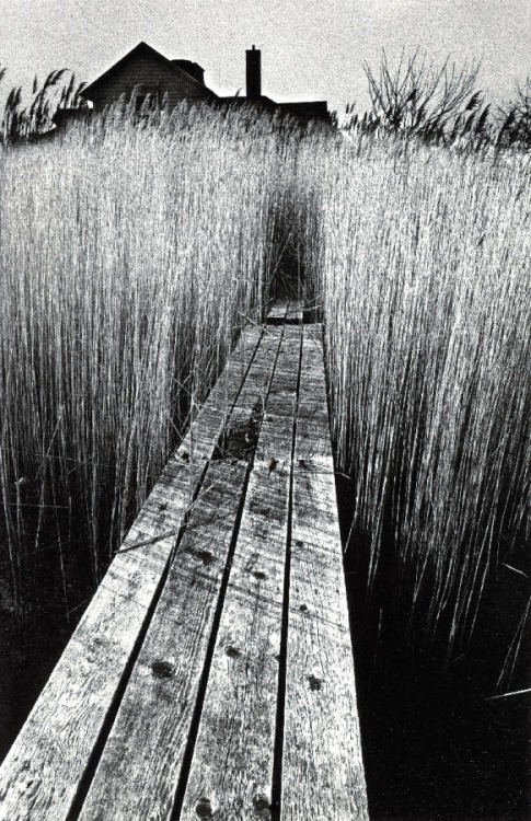 regardintemporel:   Jeanloup Sieff - The Black House, 1965