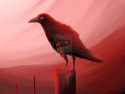 The Crow by ~ZodiarkDarkja