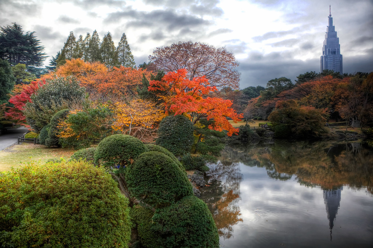 Just posted a bunch of new pictures I shot of Fall Colors in Tokyo!