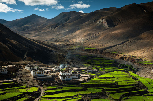travelthisworld:  Village in the Himalayas, Tibet