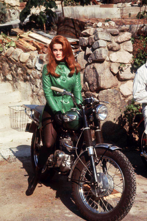 Ann-Margret in The Swinger (1966)