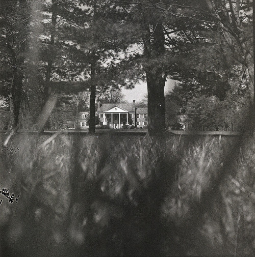 my grandparent's house on Flickr.Via Flickr: Super Ricohflex Kodak Tri-X 400 (expired 1966) Developed in Diafine at 400view large