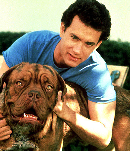 Look at the mighty fine and manly Tom Hanks posing with a badass dog.  As always, Tom Hanks remains the most flawless human being in existence.