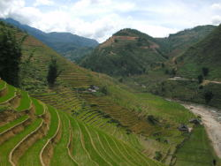 Sapa, Vietnam submitted by: whatisaweek-end thanks!
