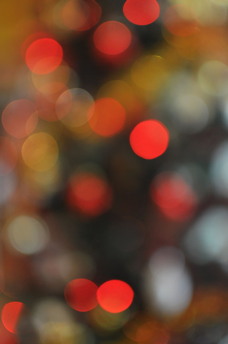 it's bokeh season