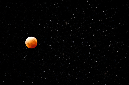 Lunar Eclipse  By Jason McKeown
