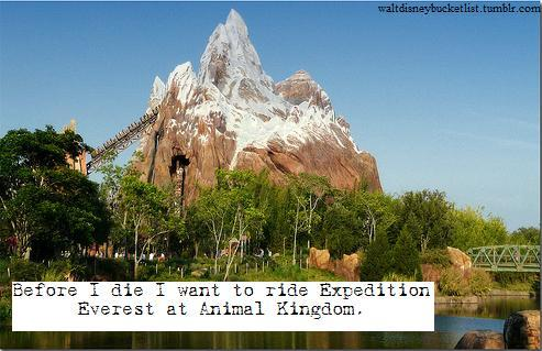 """Before I die I want to ride Expedition Everest at Animal Kingdom."" -Anonymous"