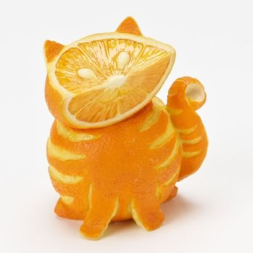Orange you glad I am a kitteh?
