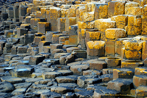 Basalt columns on the coast of Northern Ireland (by Rhodesjmartin)