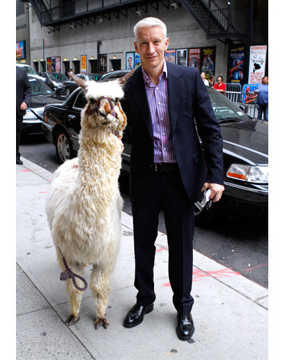 Provided Without Comment: Here is Anderson Cooper posing with a llama.
