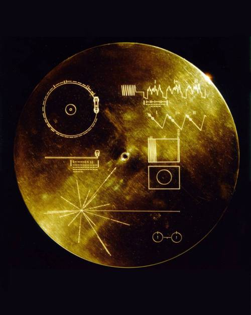 "spacep0rn:  The Voyager Golden Record The Voyager Golden Records are phonograph records which were included aboard both Voyager spacecraft,  which were launched in 1977. They contain sounds and images selected to  portray the diversity of life and culture on Earth, and are intended  for any intelligent extraterrestrial life form, or for future humans, who may find them. The Voyager spacecraft are not heading towards any particular star, but Voyager 1 will be within 1.6 light years of the star AC+79 3888 in the Ophiuchus constellation in about 40,000 years.[1] As the probes are extremely small compared to the vastness of  interstellar space, the probability of a space faring civilization  encountering them is very small, especially since the probes will  eventually stop emitting any kind of electromagnetic radiation. If they  are ever found by an alien species, it will most likely be far in the  future as the nearest star on Voyager 1's trajectory will only be  reached in 40,000 years. Carl Sagan noted that ""The spacecraft will be encountered and the record played only if there are advanced space-faring civilizations in interstellar space. But the launching of this 'bottle' into the cosmic 'ocean' says something very hopeful about life on this planet.""[2] Thus the record is best seen as a time capsule or a symbolic statement rather than a serious attempt to communicate with extraterrestrial life."
