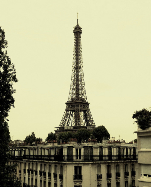 Eiffel Tower by pixiprol on Flickr.