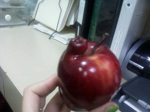 My girlfriend found a mutant apple. - Imgur