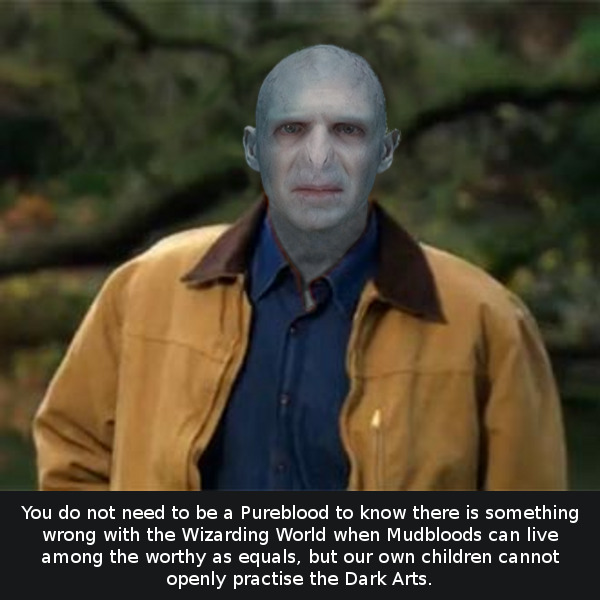 Voldemort as Rick Perry.