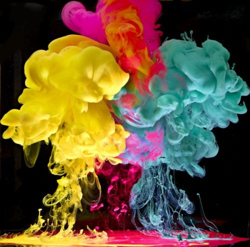 Aqueous Fluoreau by Mark Mawson Highly sculptural underwater ink photographs.