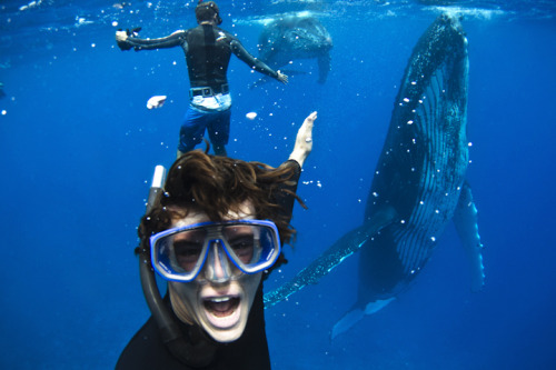 nickbannehr:  self portrait in tahiti swimming next to a 40ft humpback whale and its calf.. the place is not just good for its amazing waves and people!
