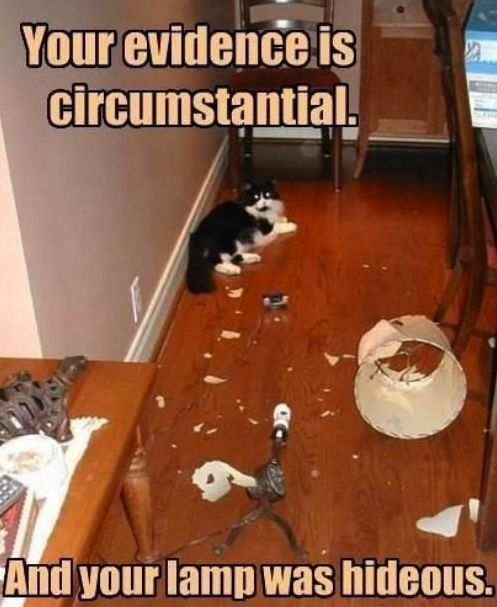 sinfulhalo:  Your Evidence Is Circumstantial