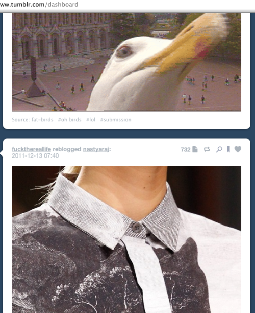 So this just happened on my dashboard and I felt that the world needed to see it.