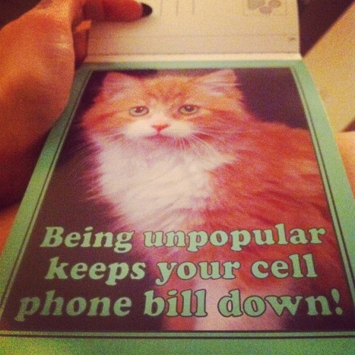 Hang in there. (Taken with Instagram at Chez Moi)