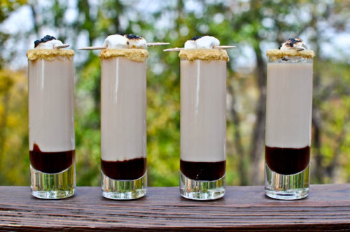 drinksfordrinkers:  S'moretini Shooters 1/2 oz marshmallow vodka 1/2 oz Godiva chocolate liqueur 1/4 oz Bailey's Irish Cream 3/4 oz cream chocolate syrup graham cracker crumbs vanilla frosting mini marshmallows Dip the rim of the glass in a bit of frosting, then into graham cracker crumbs. Pour about 1/2 tsp chocolate syrup into the bottom of the glass. Combine vodka, Bailey's, Godiva and cream in a shaker with ice and shake for 15 seconds. Pour into glass. Top with mini marshmallows toasted and skewered on a toothpick.