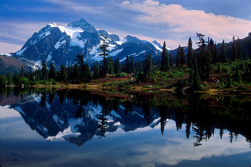 katiekashmir:  Washington