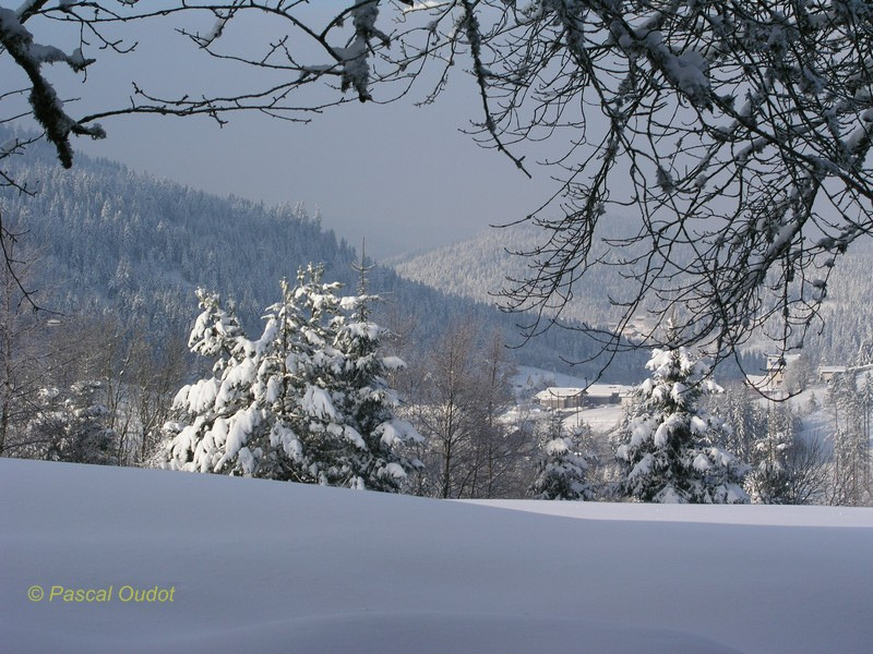 Les hauts de Gérardmer sous la neige… Photo personnelle http://www.flickr.com/photos/pasocalo/
