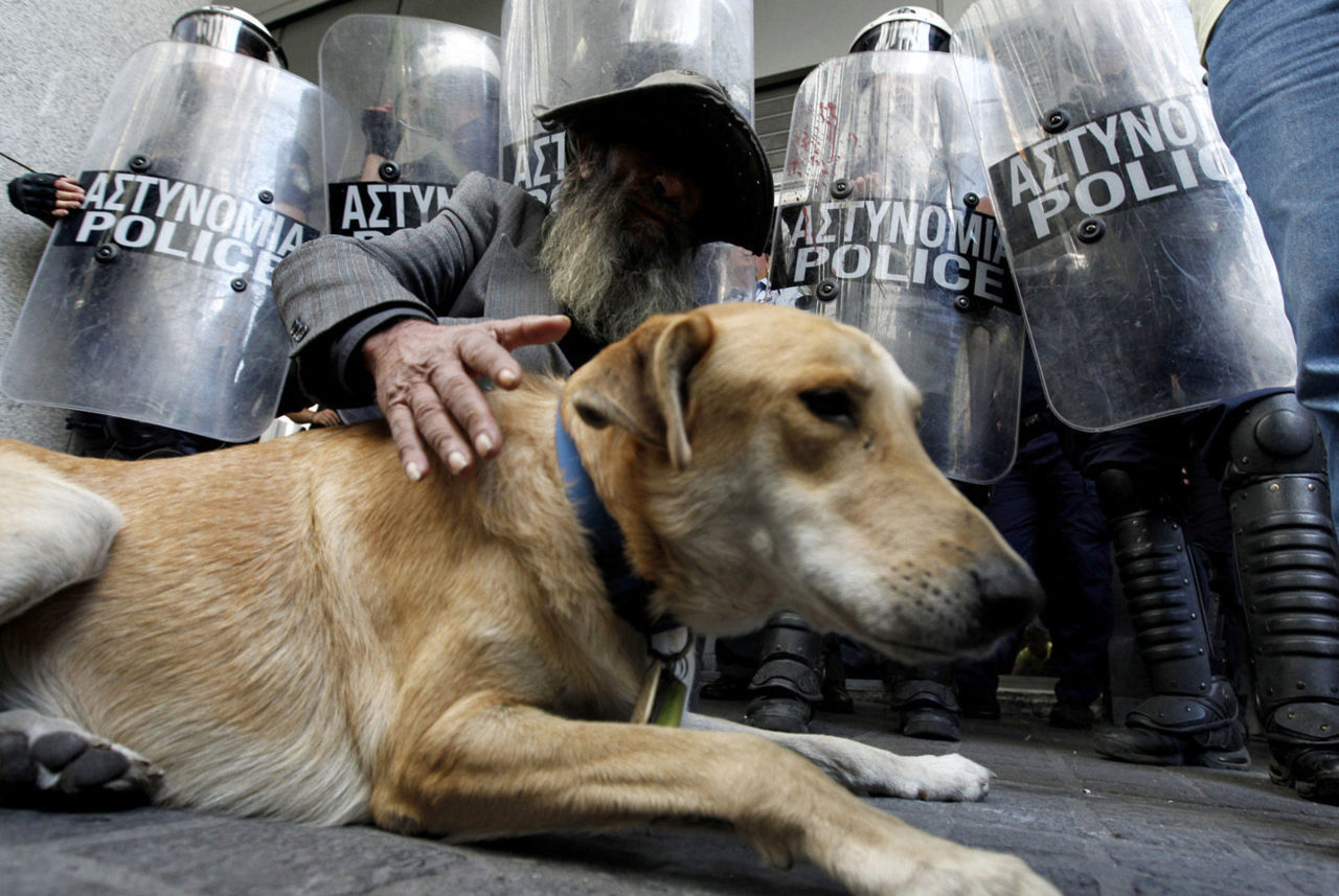 rebeldog:  27 sep 2011, Homeless people and strays are comrades and good friends