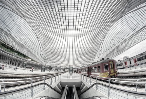 SNCB: Liège-Guillemins station, One of the most beautiful in the world…