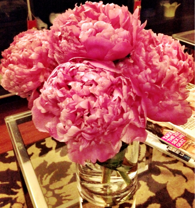 Totally obsessed with these peonies I got today. They've opened up beautifully in just a few hours. If you need flowers I recommend Berkeley florists, always fresh, lovely blooms.