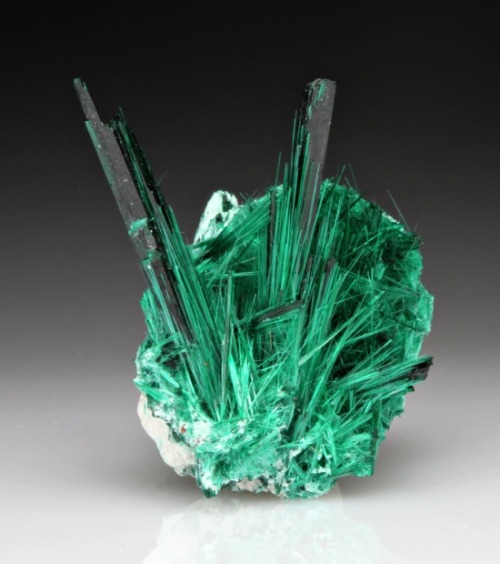 mineralia:  Brochantite from Mexico