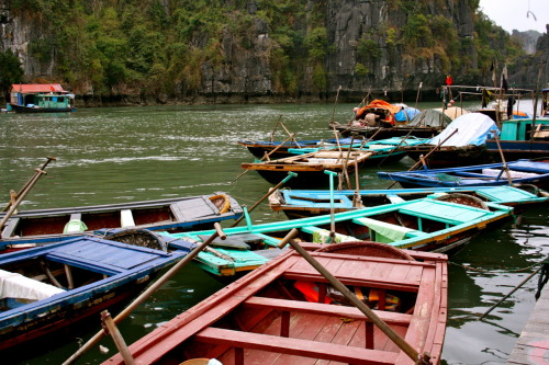 Rowboats, Ha Long Bay, Vietnam, January 2011