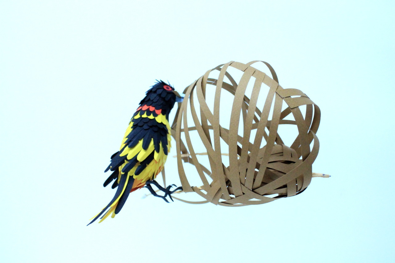 building the nest.paper cut.2011.